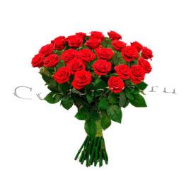 Розы российские, купить цветы Тольятти, доставка цветов в Тольятти, Cvet-pro