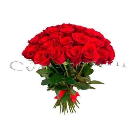 Эквадорские розы, купить цветы Тольятти, доставка цветов в Тольятти, Cvet-pro