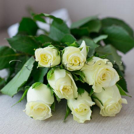 Букет белых роз, купить цветы Тольятти, доставка цветов Тольятти, белая роза, Cvet-pro