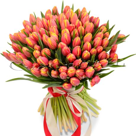Тюльпаны, купить цветы Тольятти, доставка цветов в Тольятти, Cvet-pro