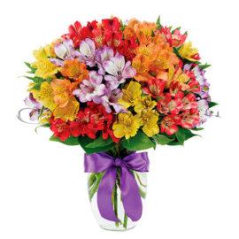 Альстромерия, купить цветы Тольятти, доставка цветов в Тольятти, Cvet-pro