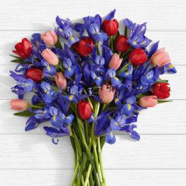 доставка цветов в тольятти | доставка цветов тольятти | цветы тольятти | розы тольятти | 8 марта | 8 марта тольятти | купить цветы | букет цветов | букет тольятти | бесплатно | доставка бесплатно | цветы | cvet-pro | тюльпаны | ирисы