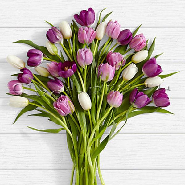 доставка цветов в тольятти | доставка цветов тольятти | цветы тольятти | розы тольятти | 8 марта | 8 марта тольятти | купить цветы | букет цветов | букет тольятти | бесплатно | доставка бесплатно | цветы | cvet-pro | тюльпаны