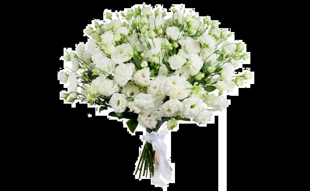 цветы стиль, белый