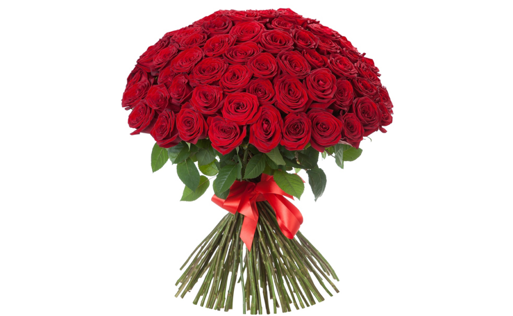 цветы стиль, красный