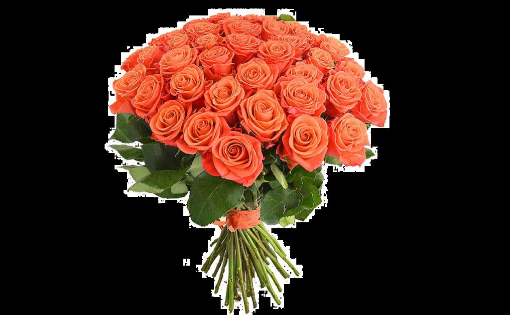 цветы стиль, оранжевый