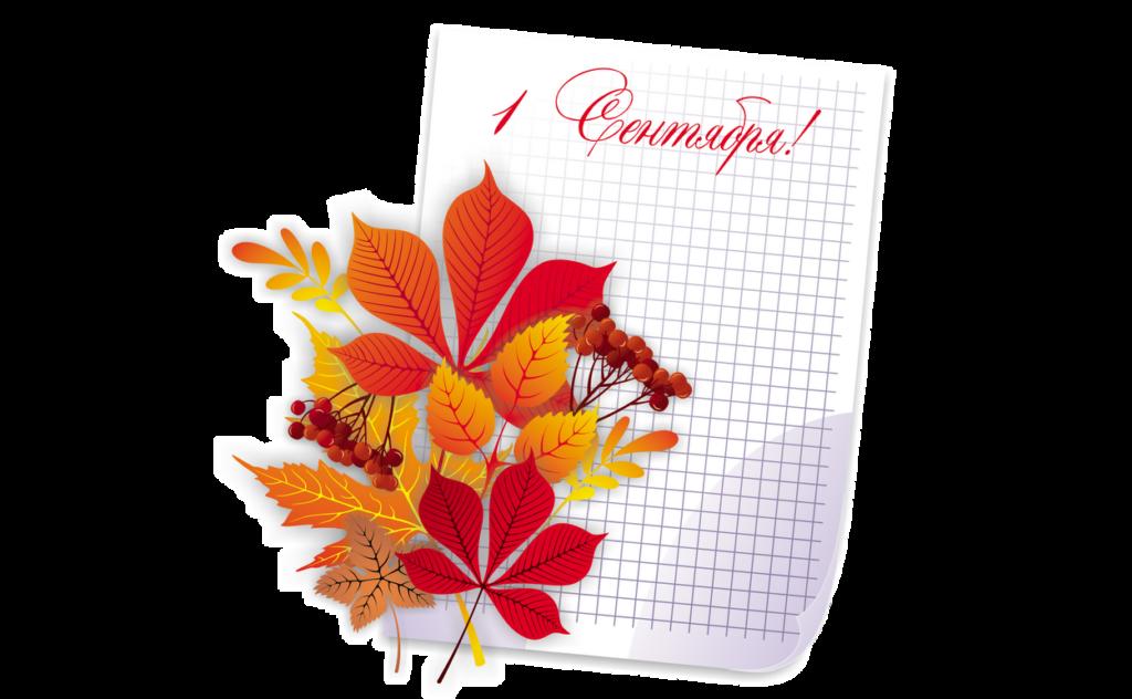 Повод дарить цветы Тольятти, 1 сентября